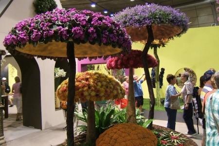 Tulln - Květinový veletrh Bez stravy