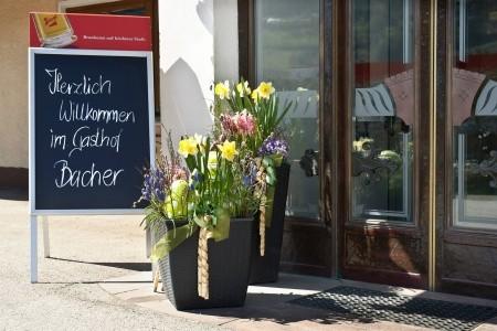 Gasthof Bacher, St. Johann Im Pongau - Salcbursko - Rakousko