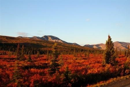 Severské Safari - Aljaškou a Yukonem v jeepech