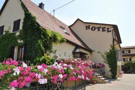Hotel LE RELAIS DU RIED Polopenze