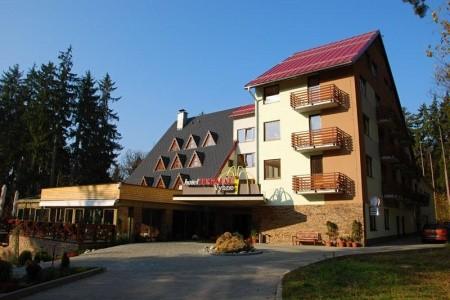 Hotel Termál