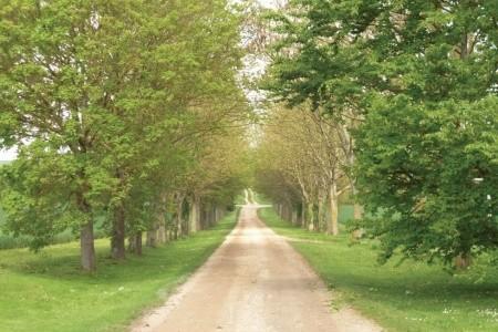 Route De Montchauvet Bez stravy