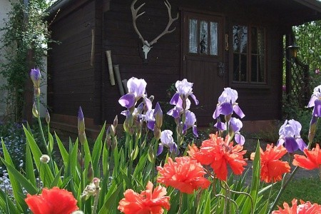 Jahreszeiten - v květnu