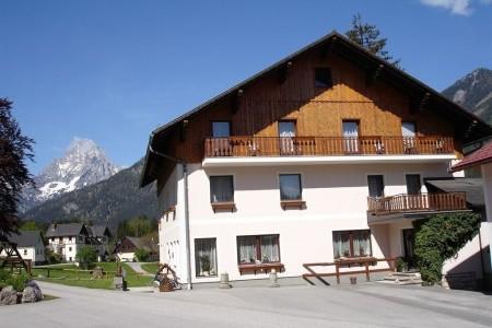 Alpenrose - Léto - alpy