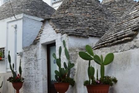 Residence Giardino Dei Trulli - v srpnu