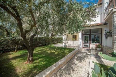 Apartments Silvano - Last Minute a dovolená