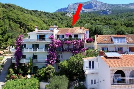 Ubytování Podgora (Makarska) - 6790 - Last Minute a dovolená