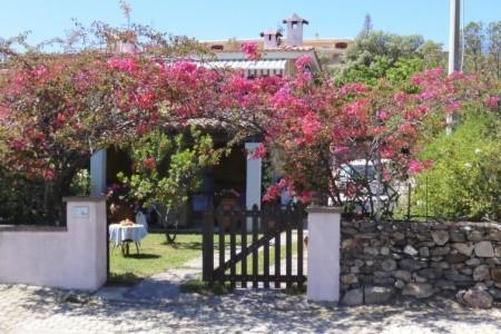 Bouganville - Last Minute a dovolená