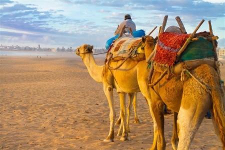 Maroko- kráľovské mestá a magická púšť, Casablanca - letecky