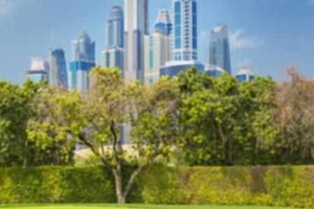 Ráj mezi mrakodrapy: Objevte přírodní krásy Dubaje
