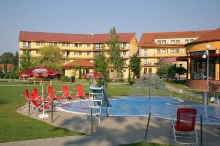 Hotel Wellness Patince - Last Minute a dovolená