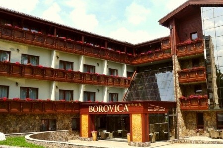 Wellness Hotel Borovica - hotel