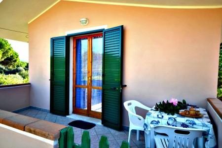 Stenella - Elba - Itálie