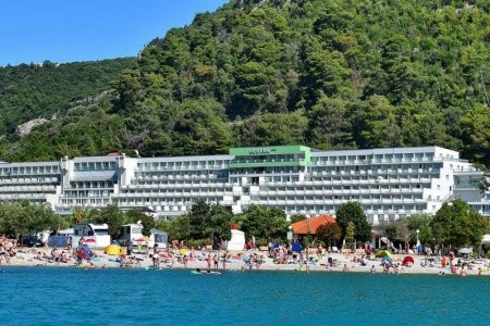 Hotel Hedera - last minute
