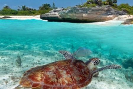 Objevte nové exotické destinace aneb Žhavé tipy pro superžhavou dovolenou