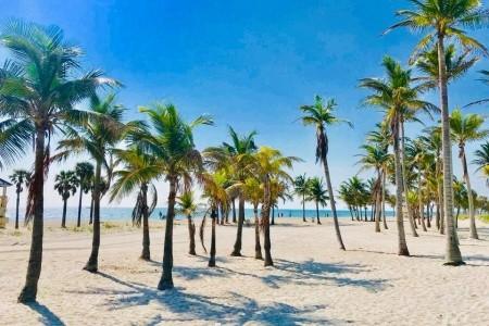 Miami Beach - utečte zimě do tropického ráje Bez stravy