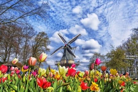 Amsterdam a největší kvetoucí park v Evropě Keuken Bez stravy