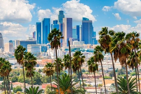 CALIFORNIA DREAM – KALIFORNSKÝ SEN Bez stravy