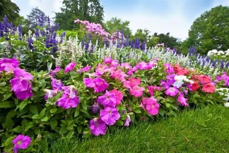 Rakousko - Kittenberské A Tullnské Zahrady