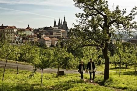 Carol - Praha 9 - Libeň - Praha v dubnu