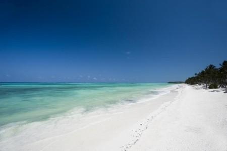 Karafuu Beach Resort A Spa, Zanzibar, Pingwe