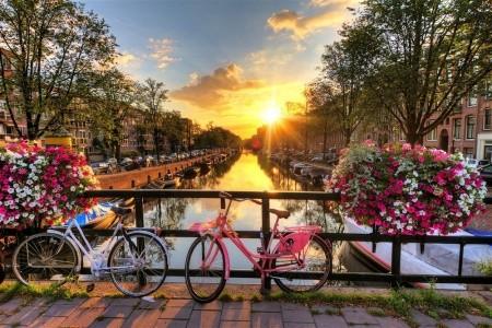 Víkend v Amsterdamu Bez stravy