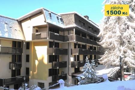 Residence Des Alpes 2 - v lednu