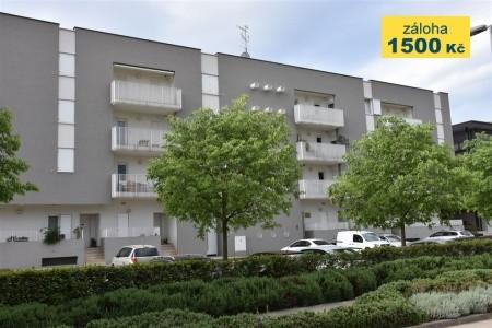 Apartment Cvek 3