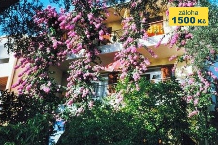 Villa Bonanca - Last Minute a dovolená