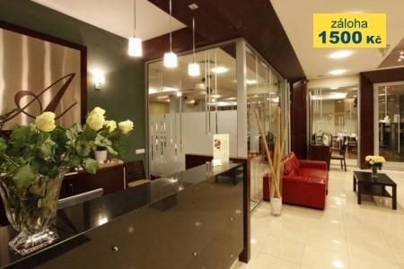 Hotel Apis - hotel