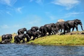JAR - Lesotho - Svazijsko - Zimbabwe - Botswana - Namibie - Velká cesta jižní Afrikou