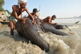Indický Kaleidoskop - Od Posvátné Gangy Do Pouštních Měst Rádžastánu