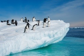 Antarktida s českým delegátem