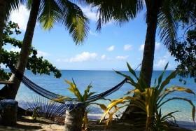 Melanésie A Polynésie - Ostrovy Fidži, Tonga, Nový Zéland A Cookovy Ostrovy