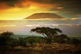 Safari v srdci divočiny