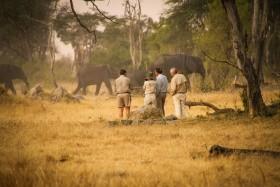 Ztracený svět - velké safari v Zimbabwe