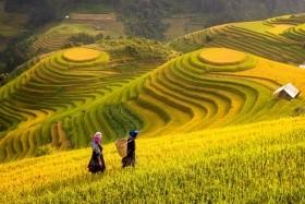 Hory a ostrovy severního Vietnamu