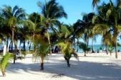 pláž Boca Chica