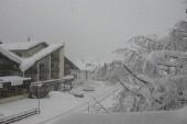 sněhové probuzení