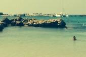 Plaz Mimosa