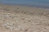 pláž :(