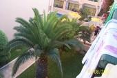 výhled z balkonu na mini bazén