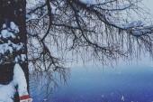 Přední gosauské jezero