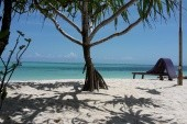 Neptune - Zanzibar