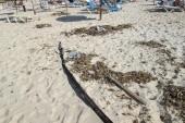 cesta na plaz