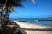 Sladký Mauricius