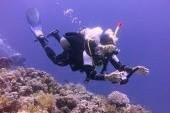 Miroslav Menhart nad koralmi