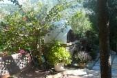 zahrada u Dakisu