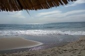 pláž1