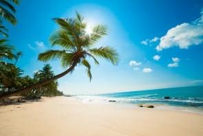 Pláž Beruwela